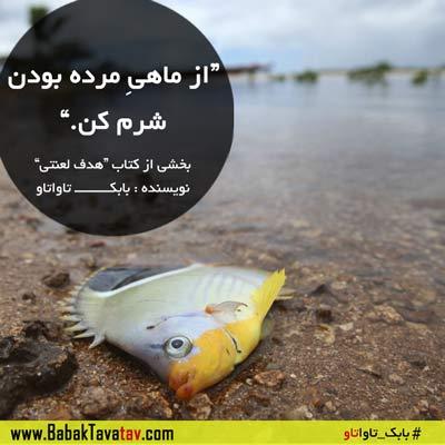 از ماهی مرده بودن شرم کن